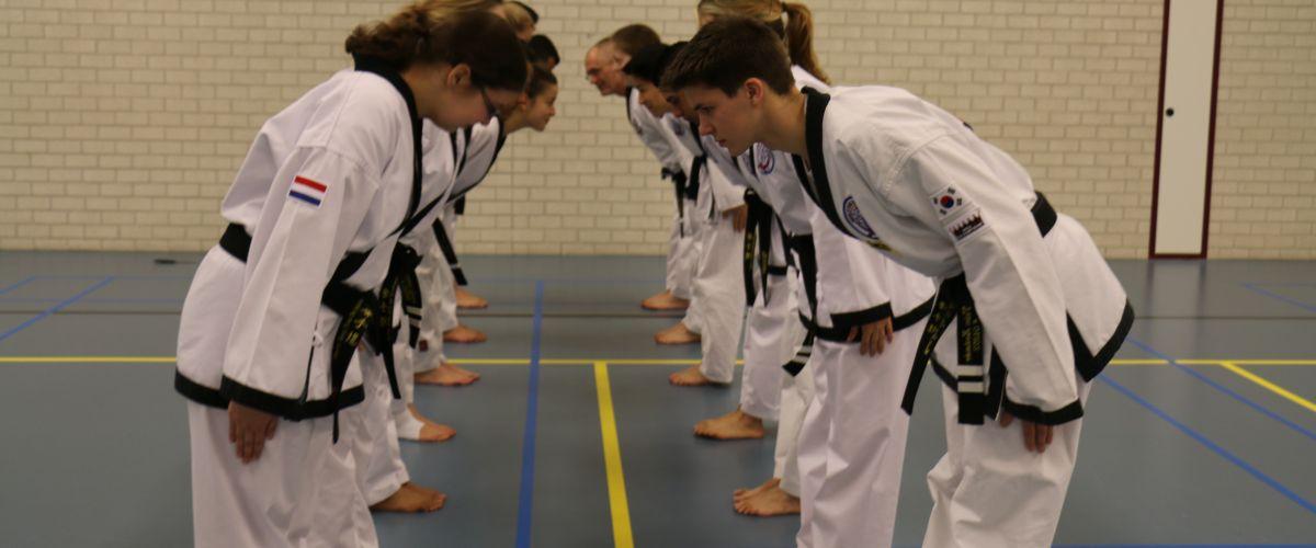 dutch open taekwondo 2017